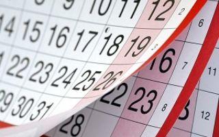 Расчет отпускных после декретного отпуска в 2019 году: как рассчитать?
