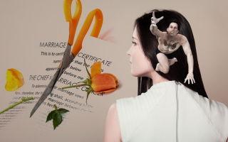 Причины развода в исковом заявлении о расторжении брака — что написать в 2019 году?