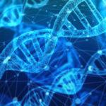 Генетическая экспертиза на отцовство в 2019 году: сколько стоит, где сделать, что нужно?