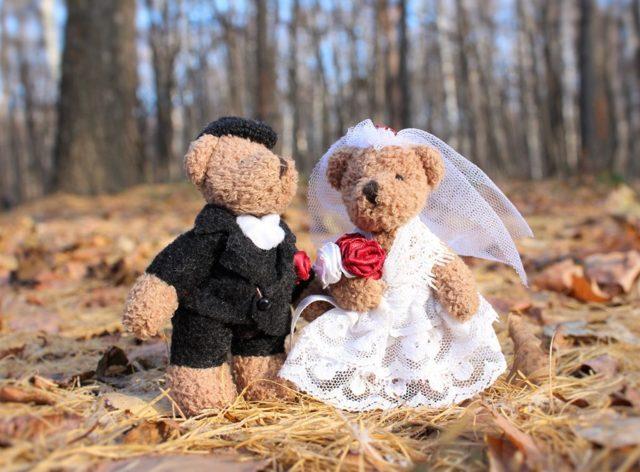 Со скольки лет можно жениться в России в 2019 году? Снижение брачного возраста