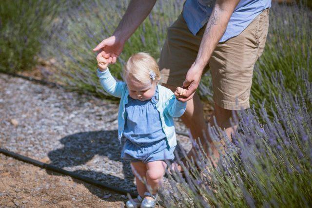 Какие документы нужны для установления отцовства в 2019 году?