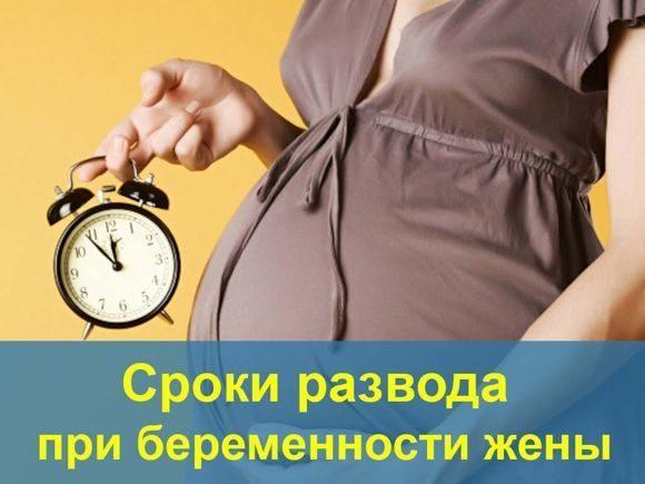 Развод при беременности: по инициативе жены, мужа в 2019 году