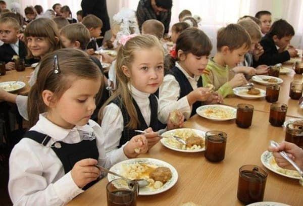 Выплаты и льготы детям чернобыльцев в России в 2021 году: пособия, права детей в детских садах, школах и вузах